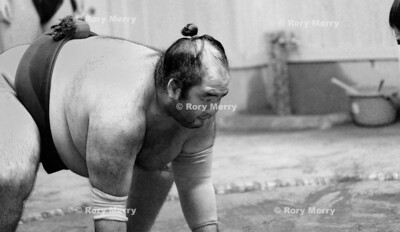Sumo Wrestling Action