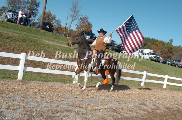 FLAG HORSE