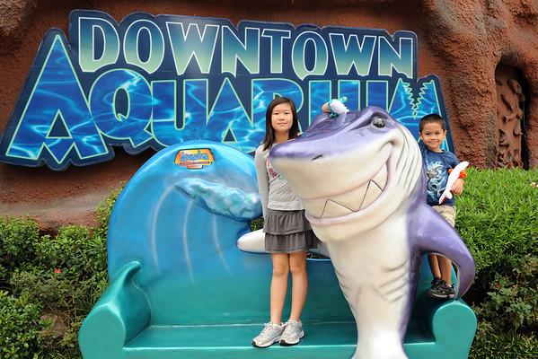 Houston Downtown Aquarium 2011