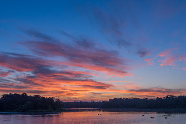 20190825-CCC sunrise and sets-birds-clouds other