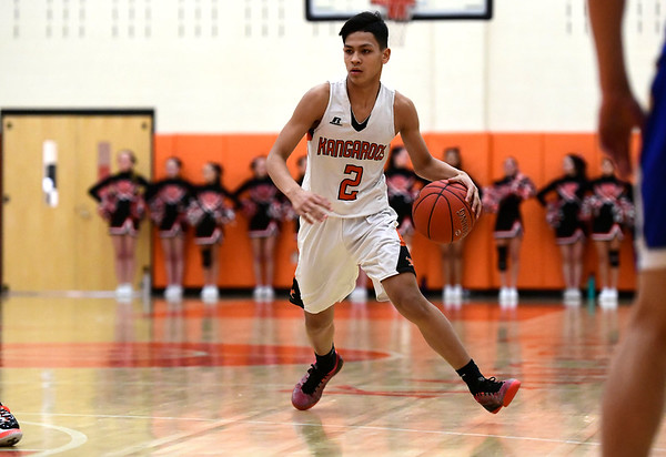 2/15/2019 Mike Orazzi | Staff Terryville High School's Dominick Dao (2) during Friday night's boys basketball game with Housatonic Regional in Plymouth.