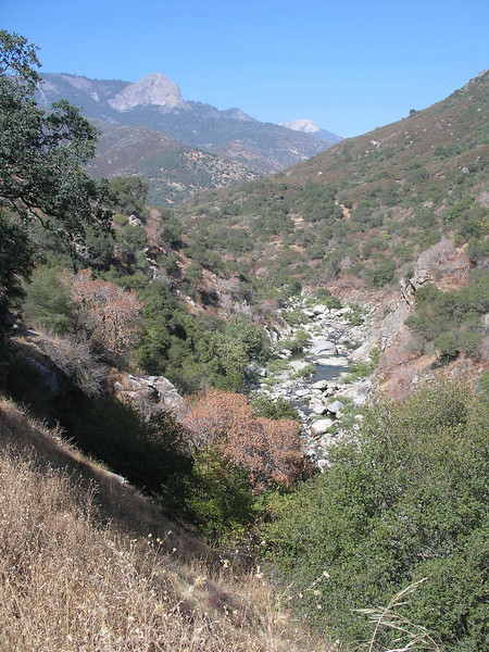 Creek at south entrance to Sequoia NP