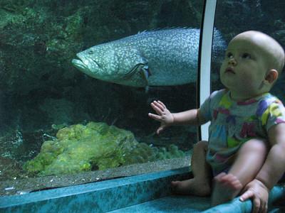 2011-05-08 Underwater World