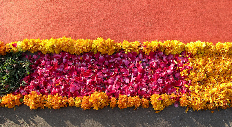 POW Day 4-IMG_6179- Udaipur.jpg