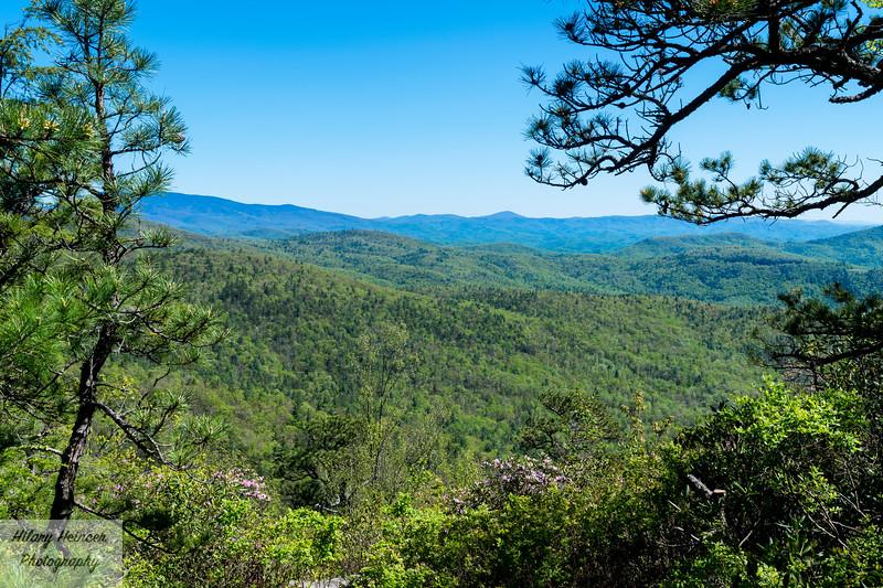 Hawksbill Trail View 2