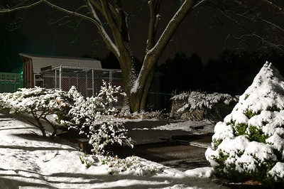 Christmas - 2012