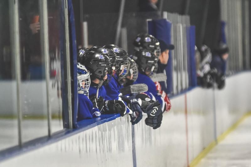 Leafs-13.jpg
