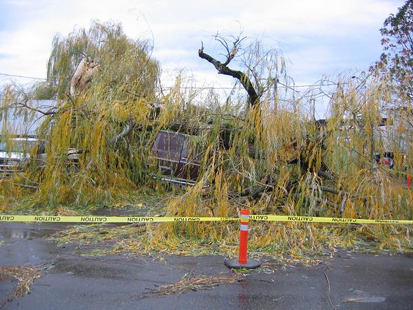 2004-12_Wind Storm