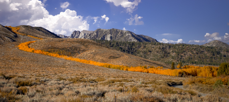 October 9 - Ribbon of color, Mammoth Lakes, CA.jpg