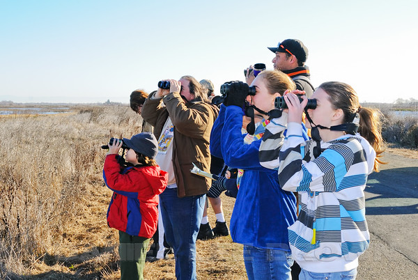 Sacramento Audubon's 1st annual Kids Christmas Bird Count
