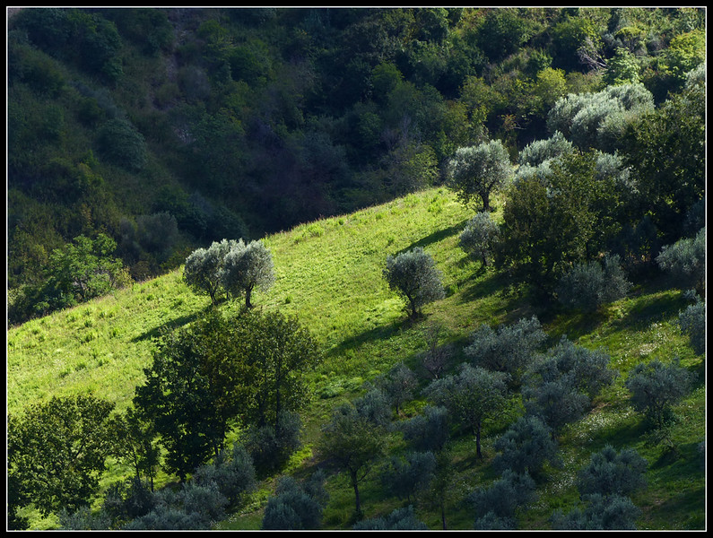 2014-09 Volterra 375.jpg