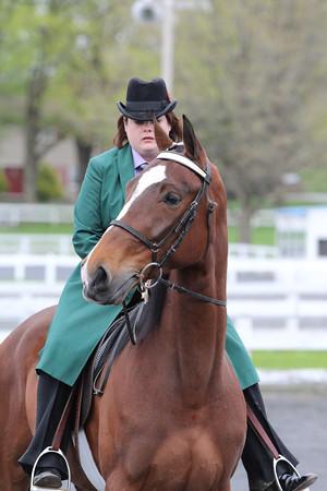 081 TWH Trail Pleasure Novice Horse Or Rider 2 Gait