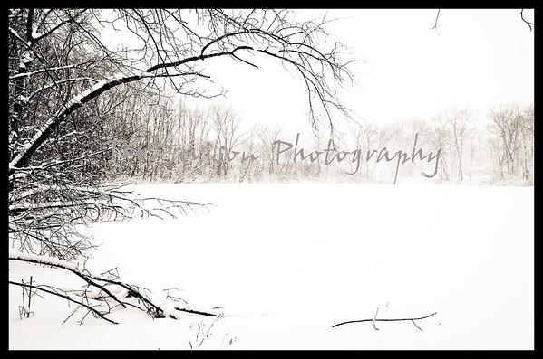 herrick lake snowshoe snowstorm