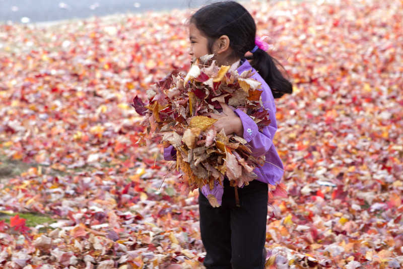 Autumn-Cleaning-2013-9.jpg