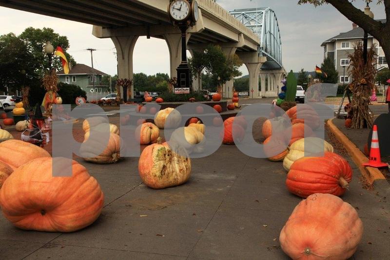 Pumpkin Patch 5637.jpg