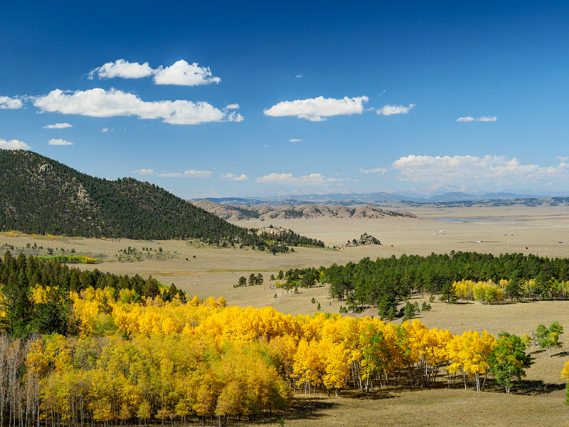 Aspens and Meadows, Route 24, Colorado