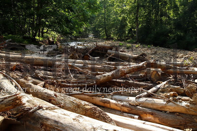 Downed trees formed a log jam completely rerouting the Little Buffalo Creek. Flooding associated with the the log jam completely washed away Tom Phillips' volleyball courts. Seb Foltz/Butler Eagle