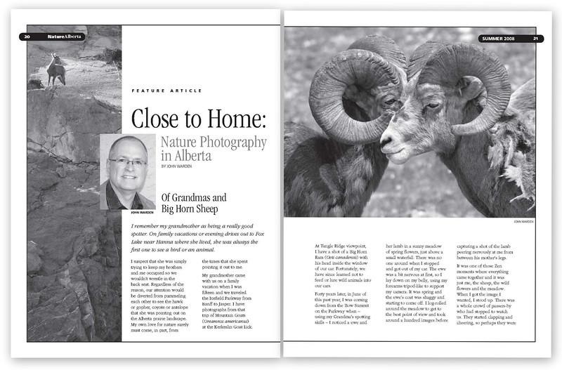 Bighorn Sheep Dbl 1.jpg