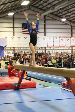 Falcon Gymnastics / S2