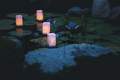 Obon Festival