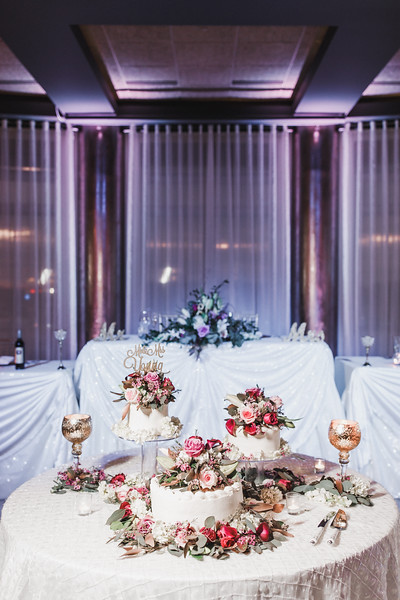Briana-Gene-Wedding-Franchescos-Rockford-Illinois-November-2-2019-297.jpg