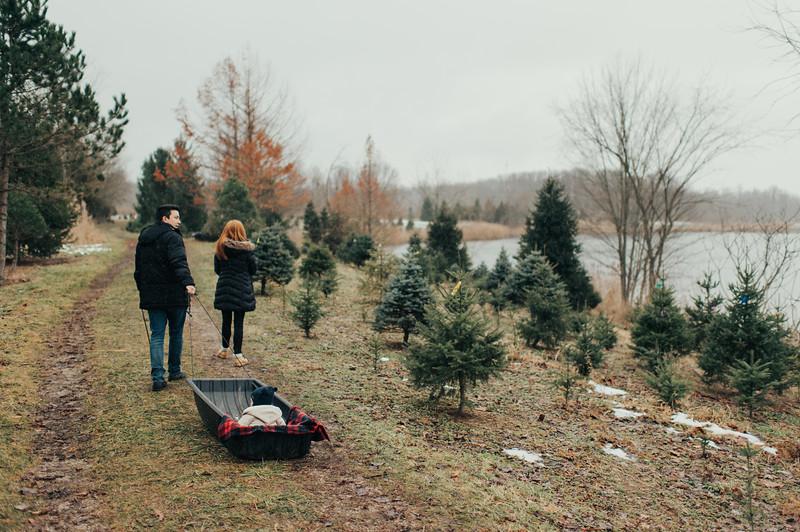 Callam Christmas Pics