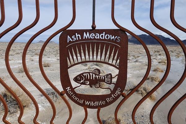 Ash Meadows National Wildlife Refuge - Feb 17, 2018