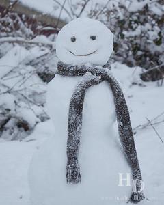 2014-01 SnowDay