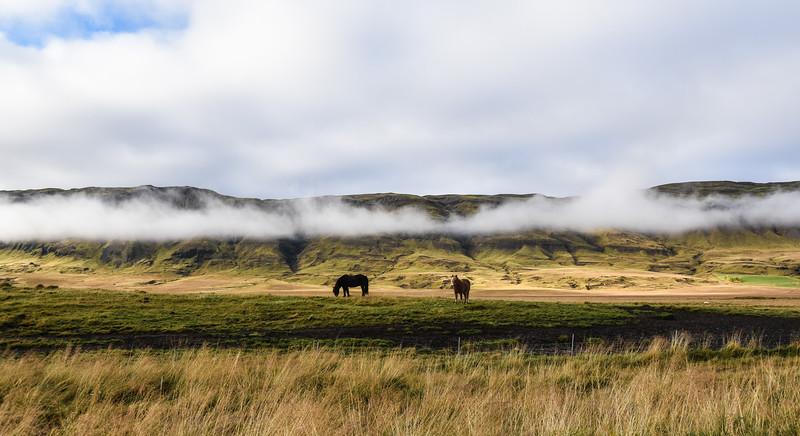 Iceland_2015_10_09_12_45_02.jpg