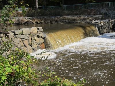 Nature Hike - Rock Creek Park - Washington, DC 11-4-12