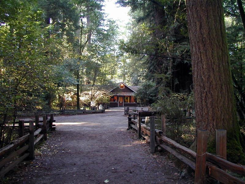 Log Cabin California Redwoods Cowell State Park.jpg