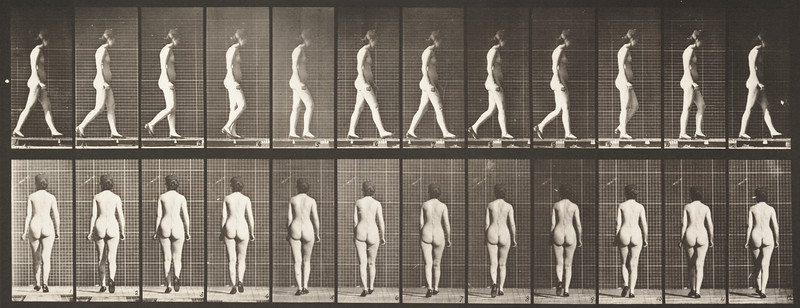 Nude woman walking with shoes on (Animal Locomotion, 1887, plate 25)
