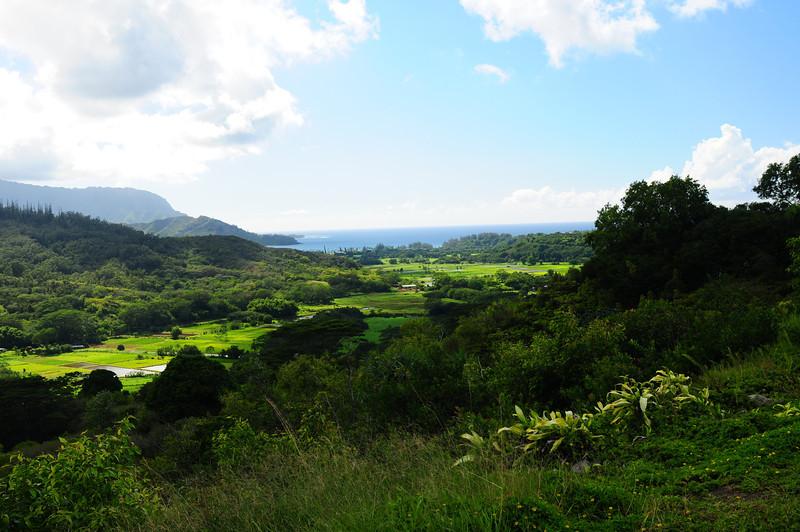2012_Kauai_Hawaii_August_  0016.JPG