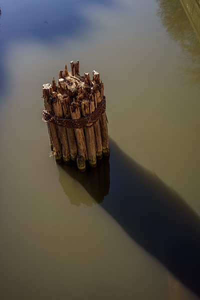 Pilings in the Chicago River North Branch