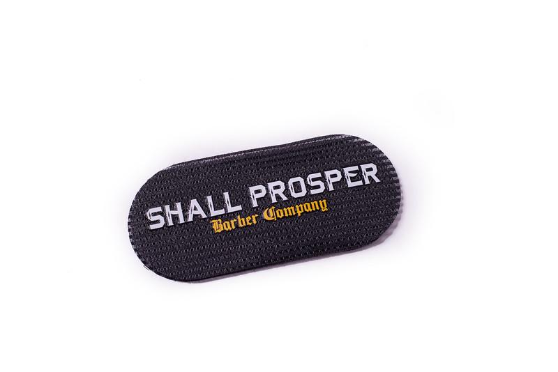 Shall Prosper-11.jpg