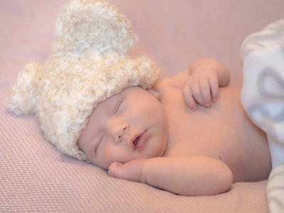 Baby Meyer