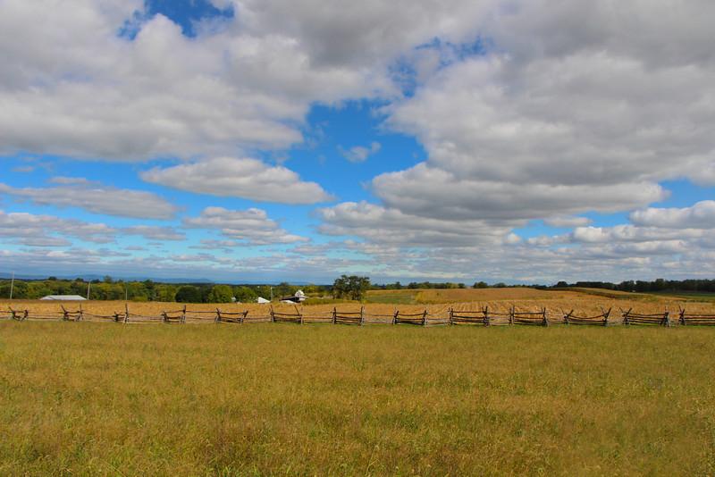 Antietam Battlefield_0344