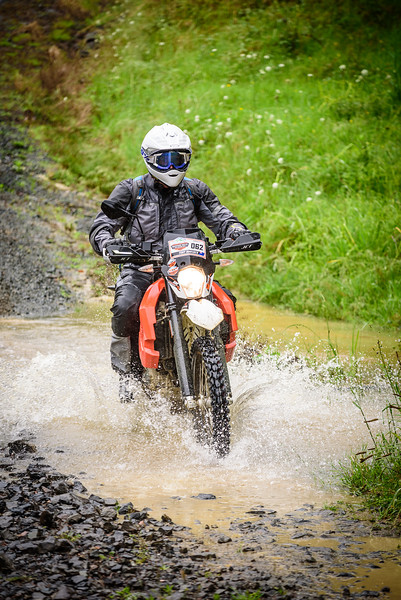 2018 KTM New Zealand Adventure Rallye - Northland (343).jpg