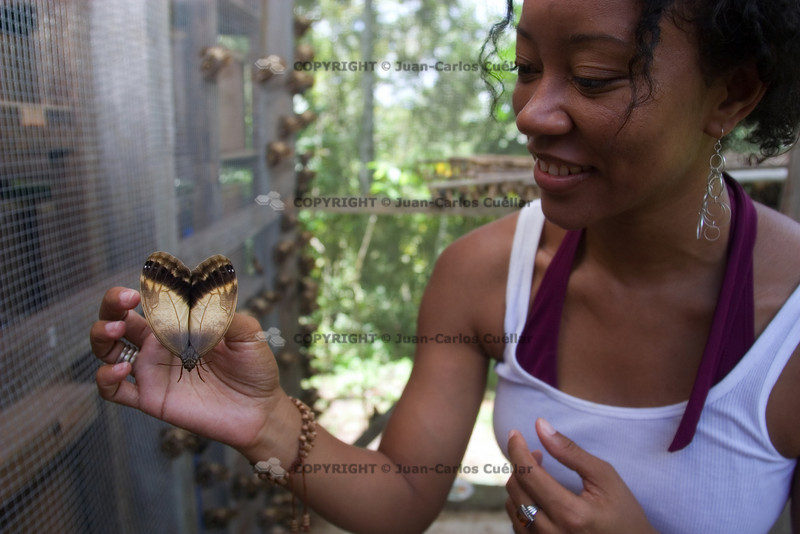 On tour at the Fallen Stones Butterfly Farm in Southern Belize, Toledo.