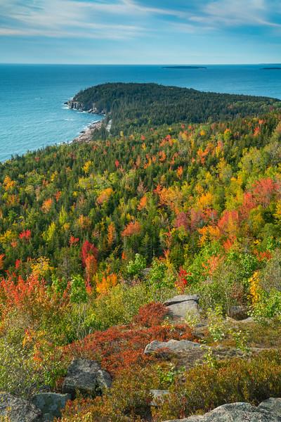 Acadia NP Fall 2019-40.jpg