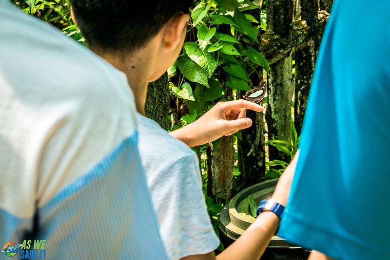 Butterfly-Park-07688.jpg