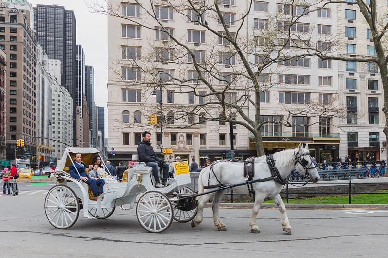 Central Park Wedding - Diana & Allen (14).jpg