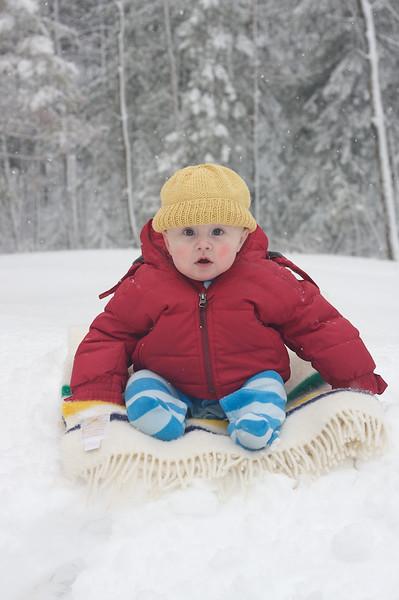 Birk in snow IMG_0006096.jpg