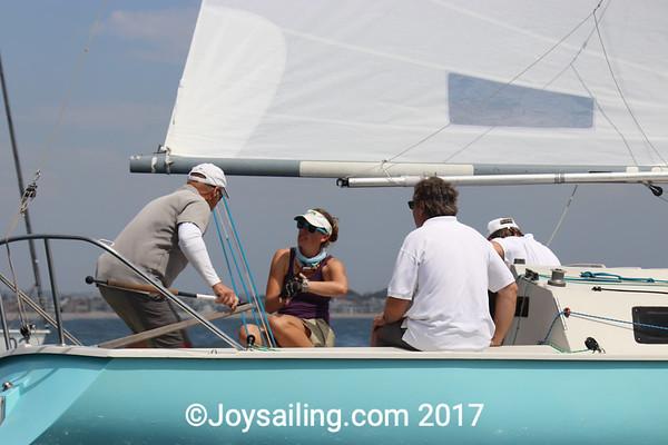 Saturday Sailing for the Martin 242's