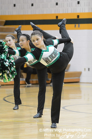 Seneca Valley HS Eaglettes Pom Exhibition