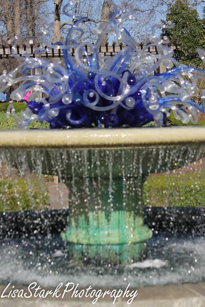 Atlanta Botanical Garden-6.jpg