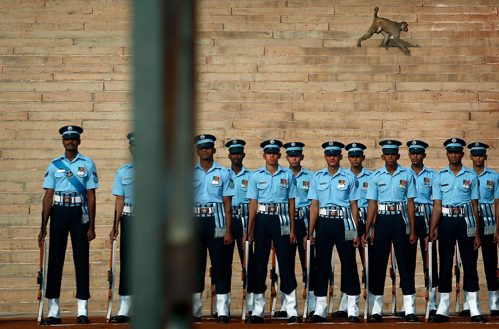 . A monkey walks past Indian soldiers waiting for the start of a ceremonial reception of Egyptian President Mohammed Morsi at the Presidential Palace in New Delhi, India , Tuesday, March 19, 2013. Morsi is on a two-day visit to India. (AP Photo/ Saurabh Das)