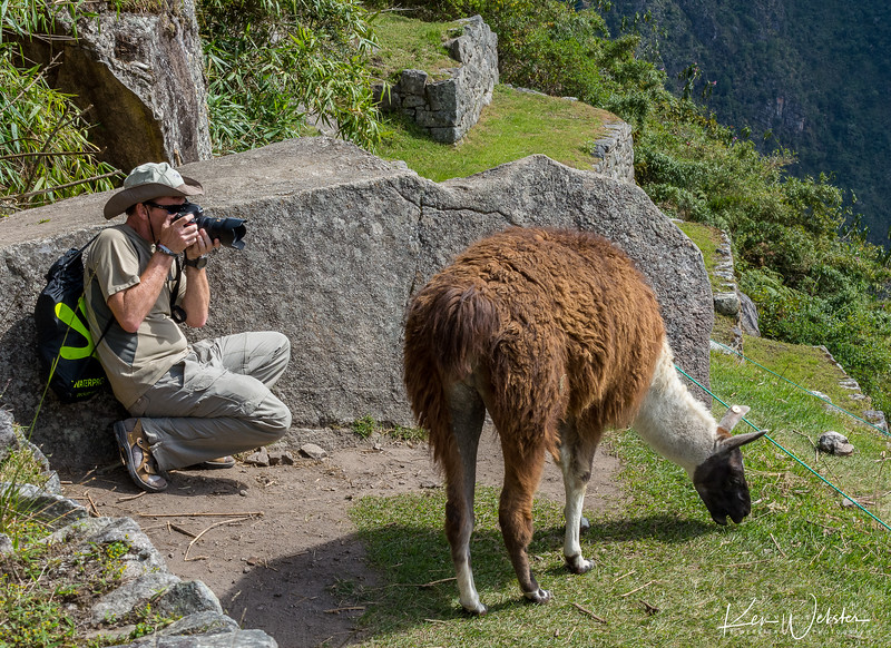2018 Machu Picchu-83.jpg