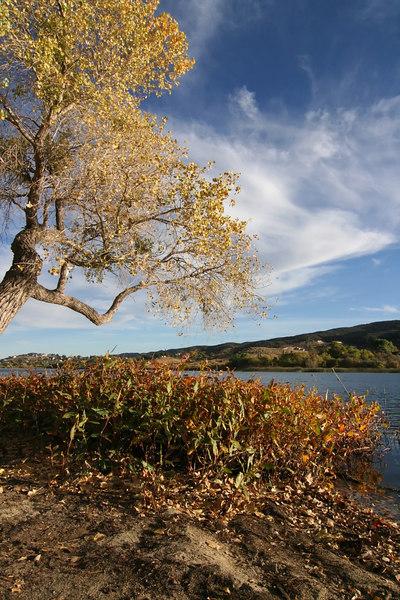 Lake Elizabeth 077_filtered.jpg