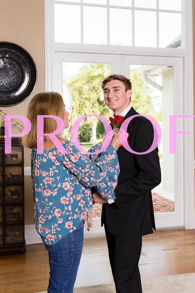 Prom 2019-4.jpg